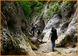 Внизу ущелья большого каньона в Крыму, преодолевая препятствия на пути.