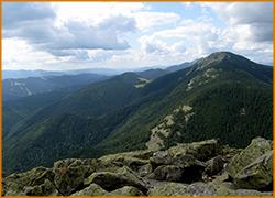 Вид на Карпатские горы с вершины Хомяка.