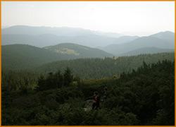 Черногорский хребет с высоты.