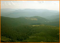 Карпатские горы неописуемо красивы.