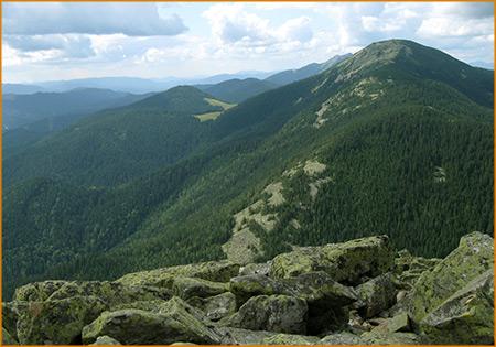 Вид с вершины горы Хомяк.