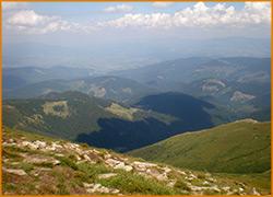 Пейзаж карпатских гор поражает буйством цветов и оттенков.