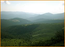 Вид на карпатские горы.