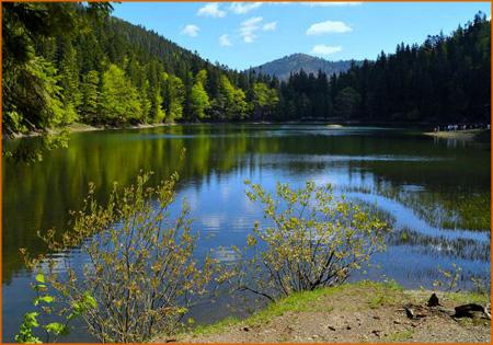 ozero-sinever-dolina-narcis