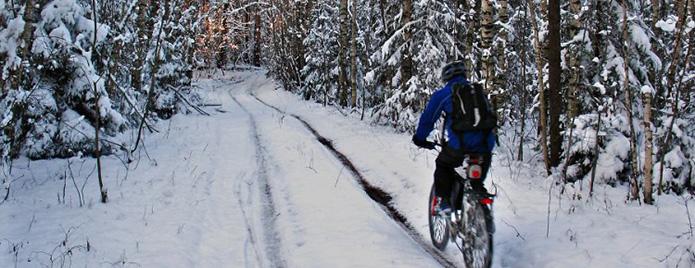 ezda-na-velosipede-zimoy-po-lesu
