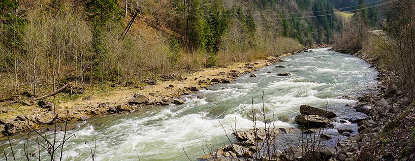 река Черный Черемош Карпаты